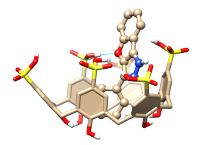 Donor and acceptor H-bond sites increases the probability of keeping the drug in place for a higher retention rate