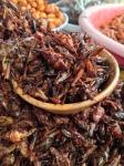 Grasshoppers. A delicacy in Oaxaca