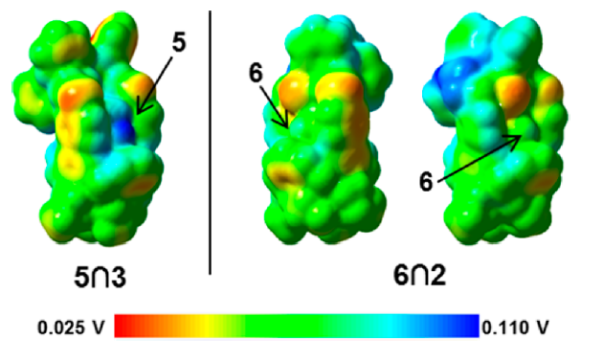 Electrostatic potential mapped onto the electron density surface of one of the aducts under study